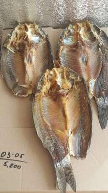 Рыбный цех г. Шахты реализует вяленую рыбу оптои и в розницу в Ростове-на-Дону Фото 1