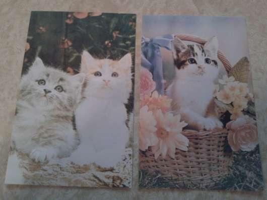 Календарики и открытки в Ростове-на-Дону Фото 2