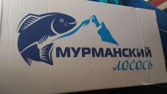 Сёмга ---лосось атлантический