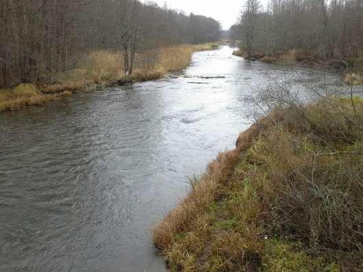 Заповедный участок на берегу реки Булатная