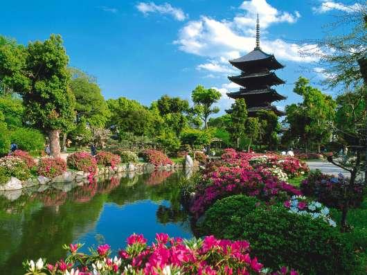 Организуем поездку в Китай. Приходите к нам