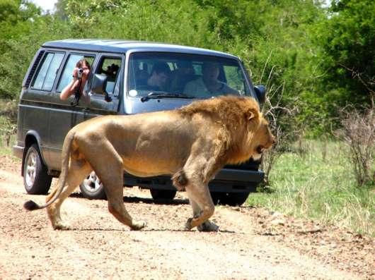 Путешествие в Африку. Туры в ЮАР