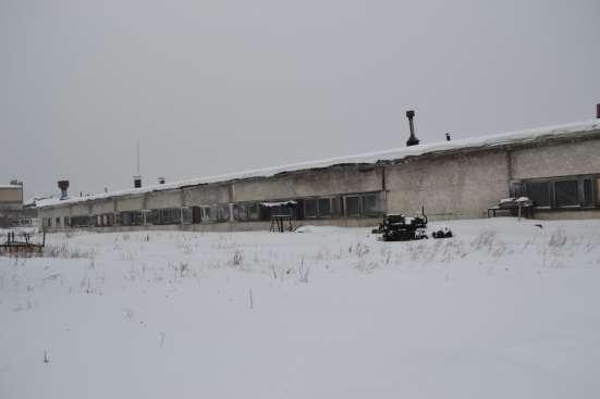 Производственное здание в г. Усть-Илимск Фото 3