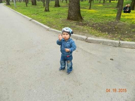 Продам перепелят и несушек перепела в г. Алматы Фото 1