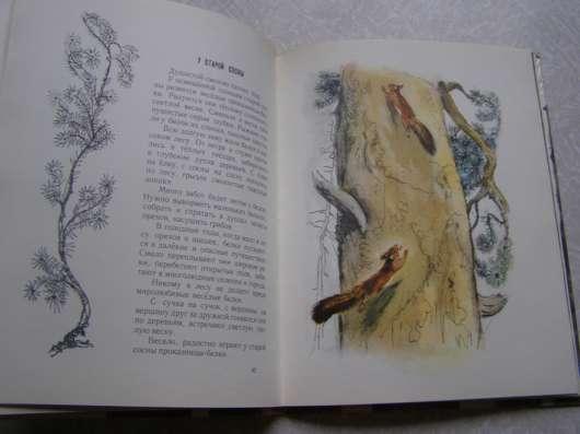 Год в лесу (книга для детей про животных)