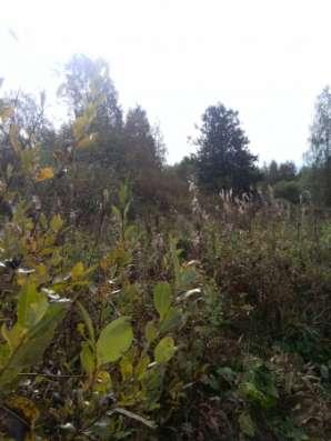 Земельный участок 12 соток в п. Щербаково в г. Выборг Фото 3