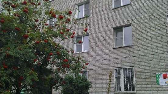 Продам 2-х комнатную квартиру в Бердске Фото 2