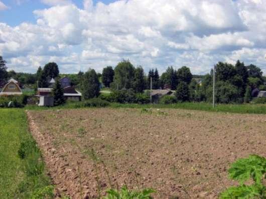 Земельный участок 22 сотки (под ПМЖ)в дер. Вяземское, Можайский р-он, 109 км от МКАД по Минскому шоссе.