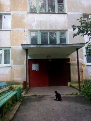 Продается 2-комнатная квартира в пос. Новосиньково, д.41 в Дмитрове Фото 3
