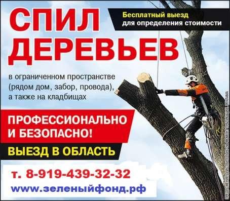 Удаление деревьев любой сложности в Воронеже Фото 1